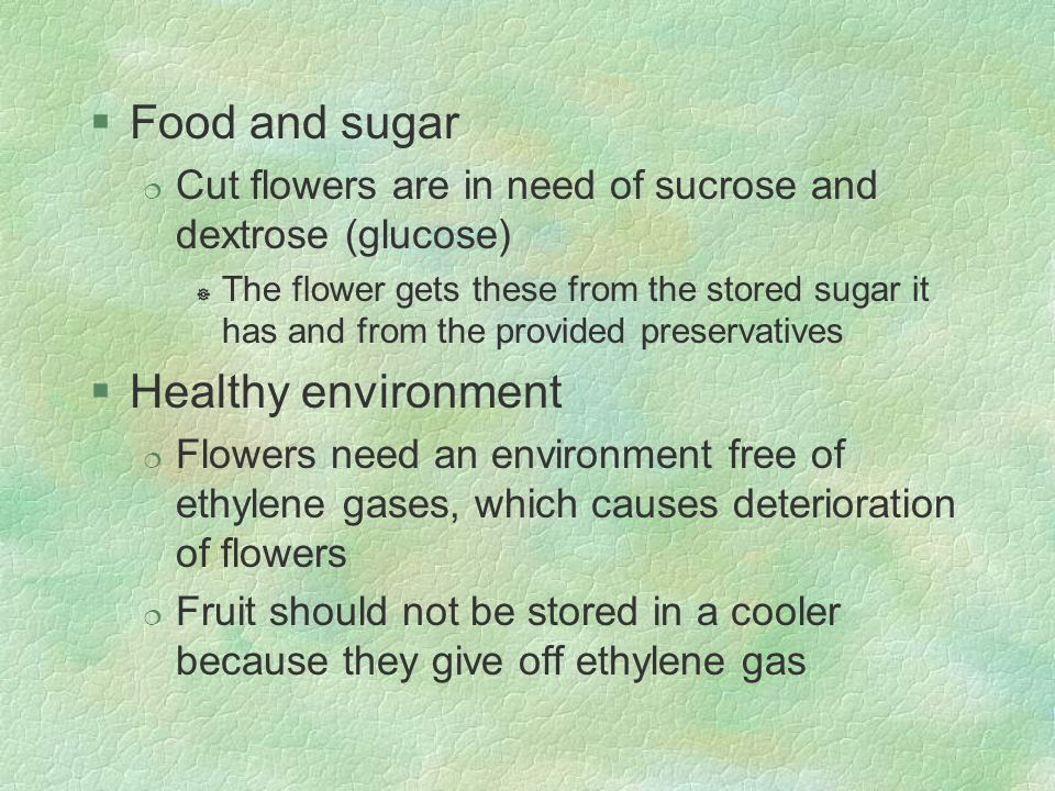 Food and sugar Healthy environment