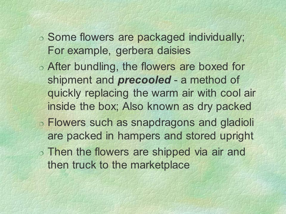 Some flowers are packaged individually; For example, gerbera daisies