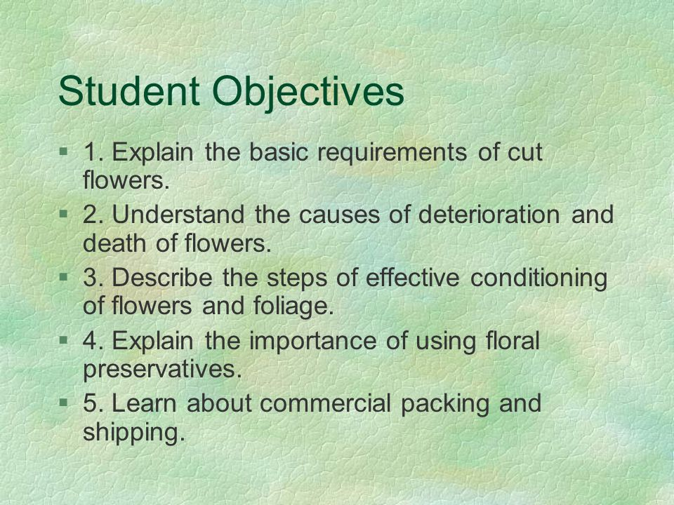 Student Objectives 1. Explain the basic requirements of cut flowers.