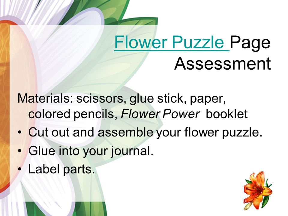 Flower Puzzle Page Assessment