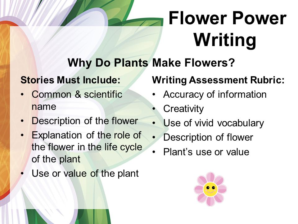 description of flowers essay Your favorite flower may hold the key to your personality find out what your  flower preference says about you.