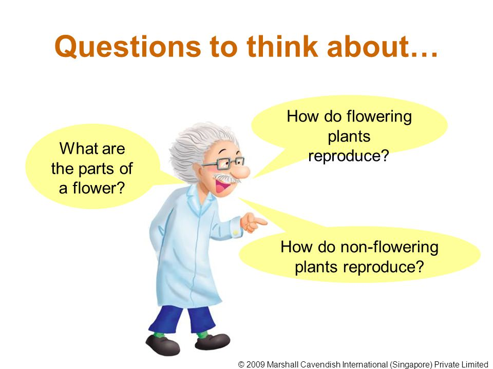 Questions to think about…