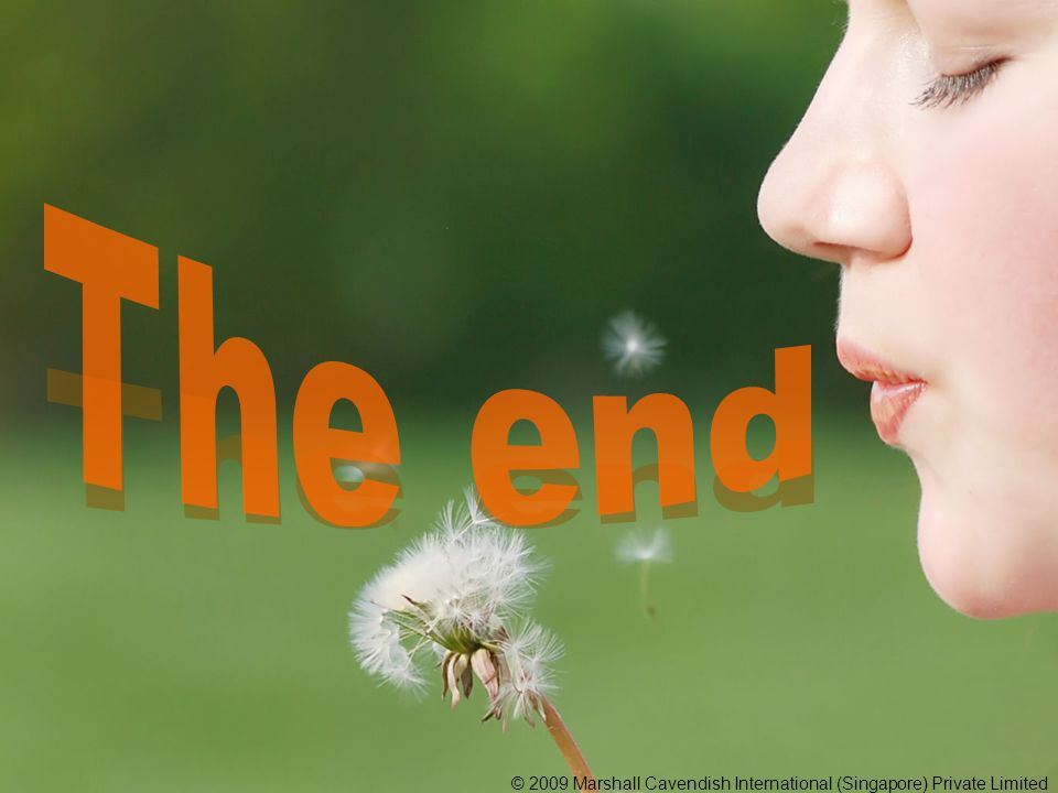 The end © 2009 Marshall Cavendish International (Singapore) Private Limited