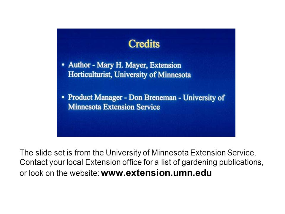 The slide set is from the University of Minnesota Extension Service