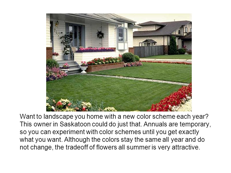 Want to landscape you home with a new color scheme each year