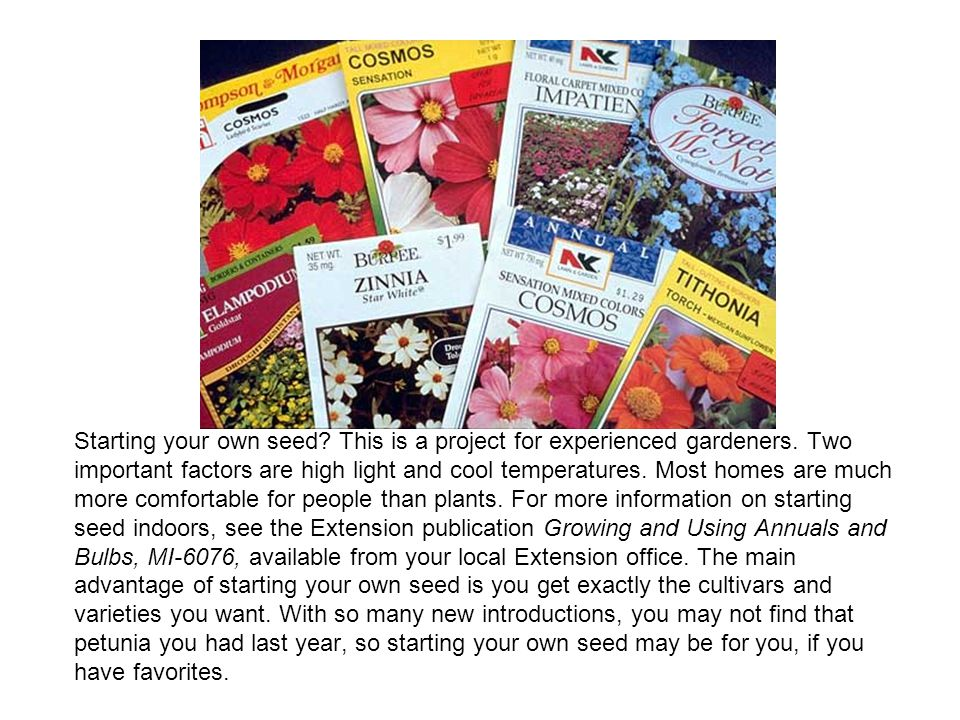 Starting your own seed. This is a project for experienced gardeners
