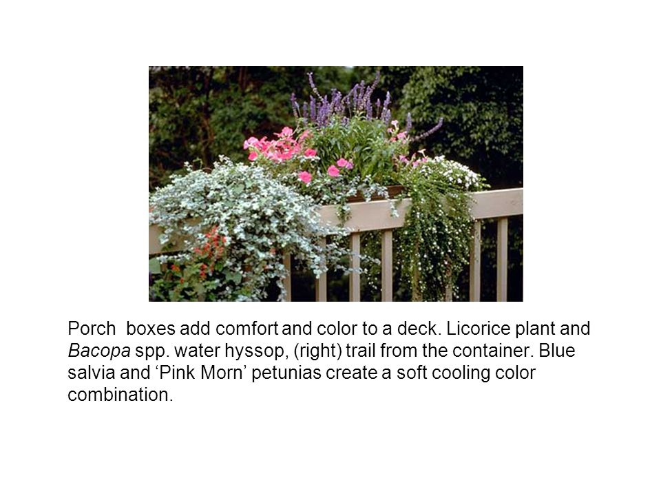 Porch boxes add comfort and color to a deck