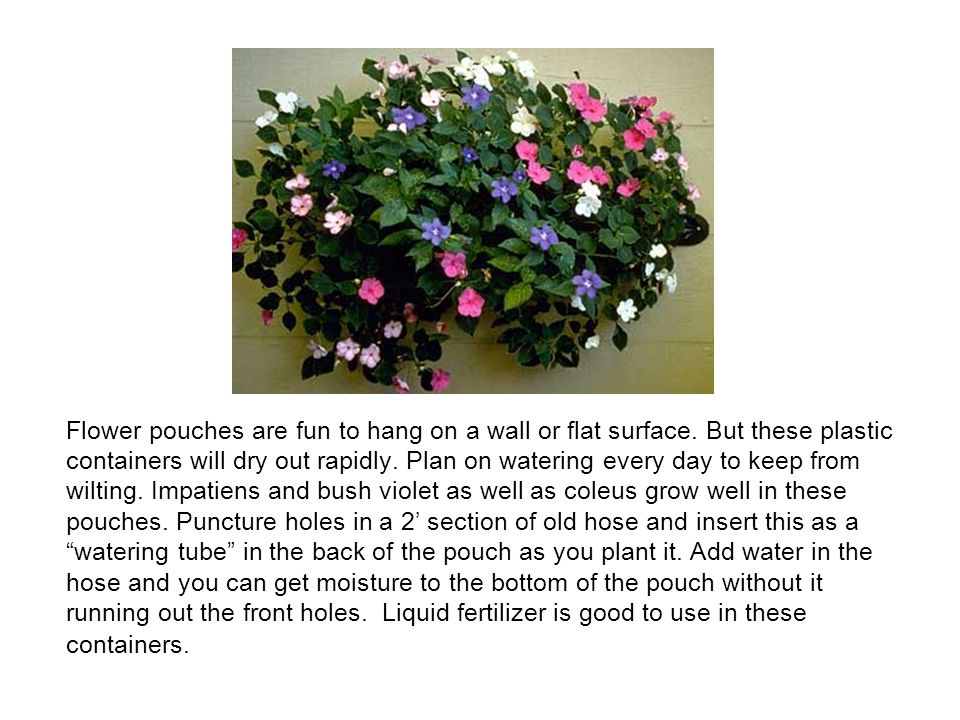 Flower pouches are fun to hang on a wall or flat surface