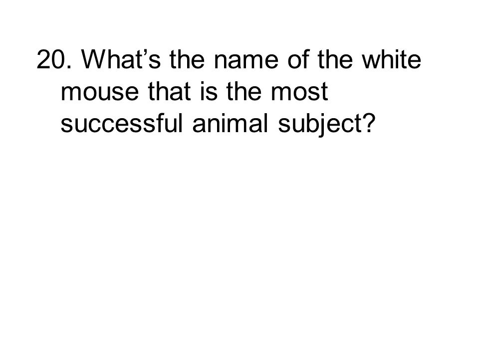 20. What's the name of the white mouse that is the most successful animal subject