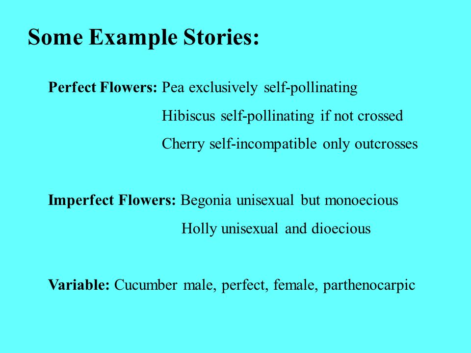 Some Example Stories: Perfect Flowers: Pea exclusively self-pollinating. Hibiscus self-pollinating if not crossed.