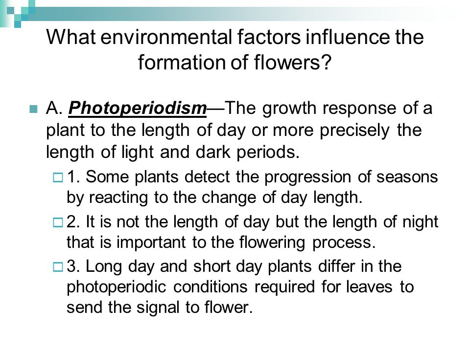 What environmental factors influence the formation of flowers