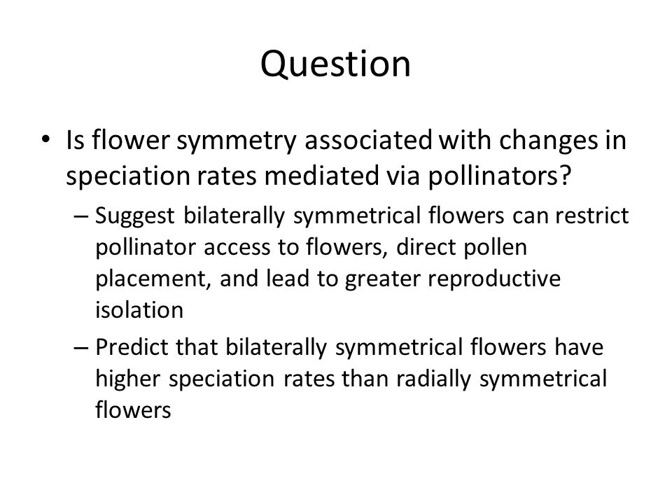 Question Is flower symmetry associated with changes in speciation rates mediated via pollinators