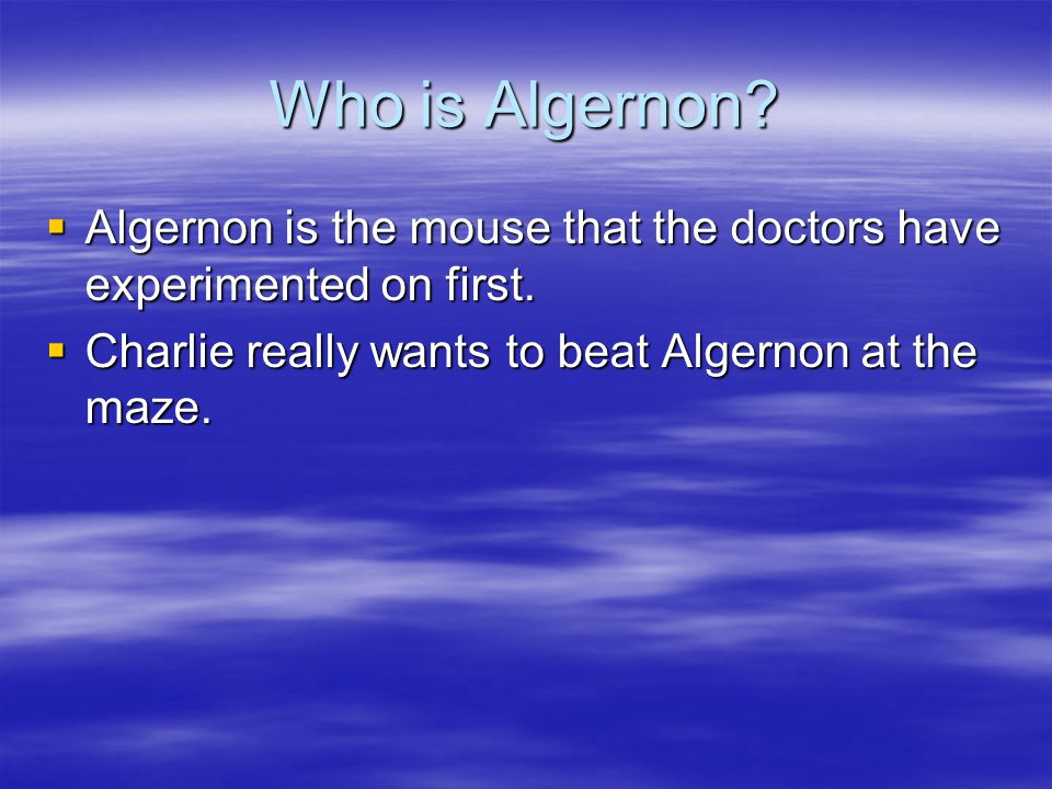 Who is Algernon. Algernon is the mouse that the doctors have experimented on first.
