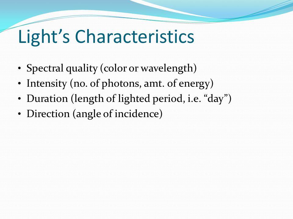 Light's Characteristics
