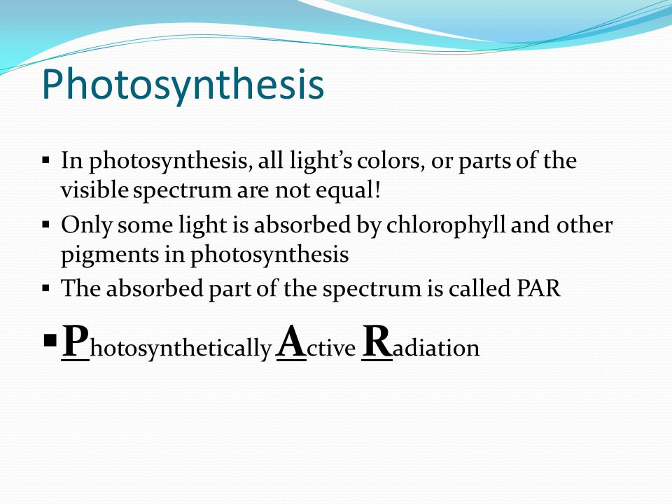 Photosynthesis Photosynthetically Active Radiation