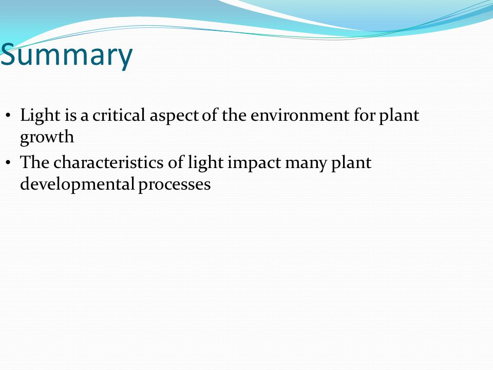 Summary Light is a critical aspect of the environment for plant growth