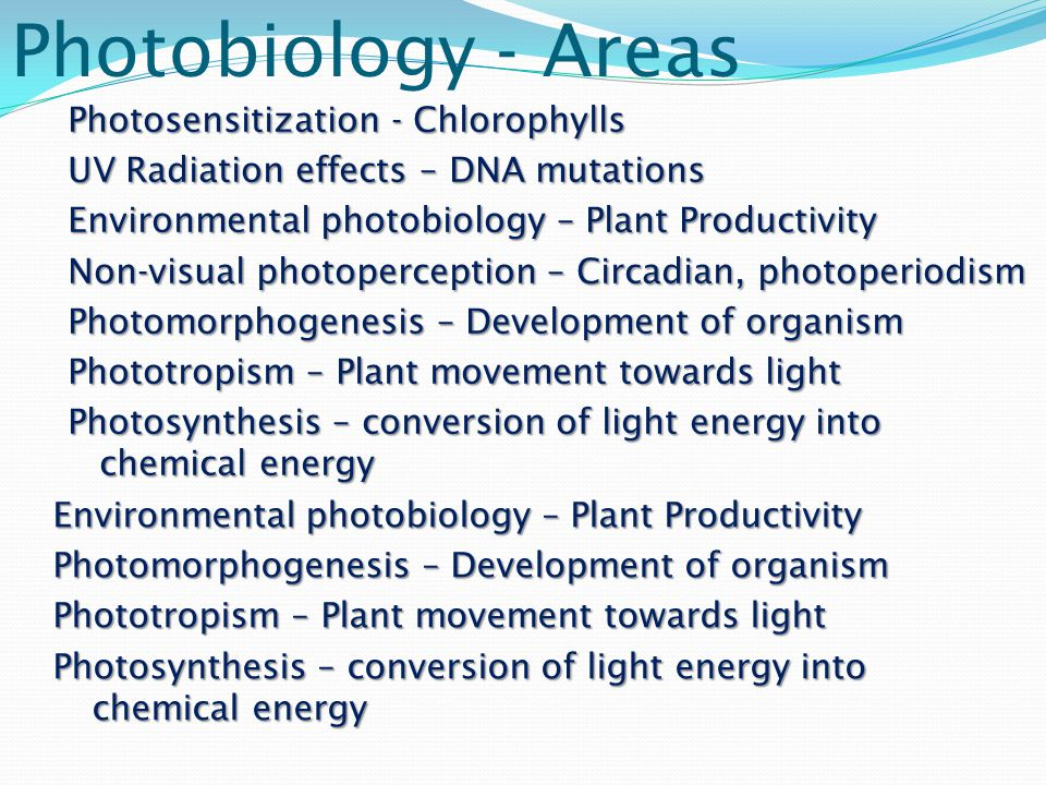 Photobiology - Areas