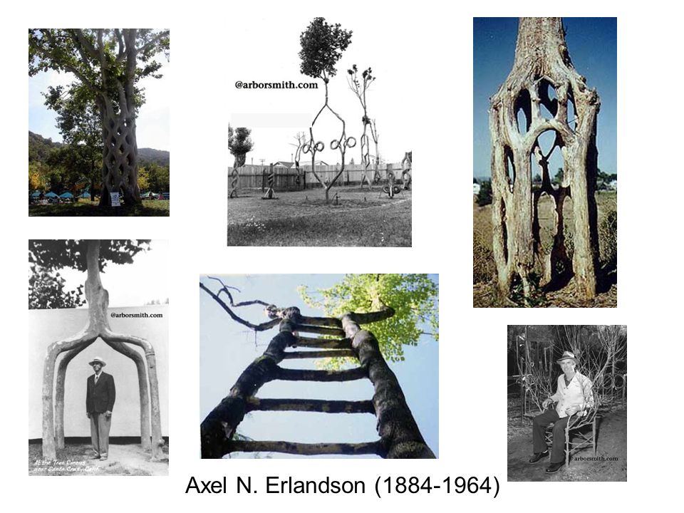 Axel N. Erlandson (1884-1964) Figuring out how he did it.