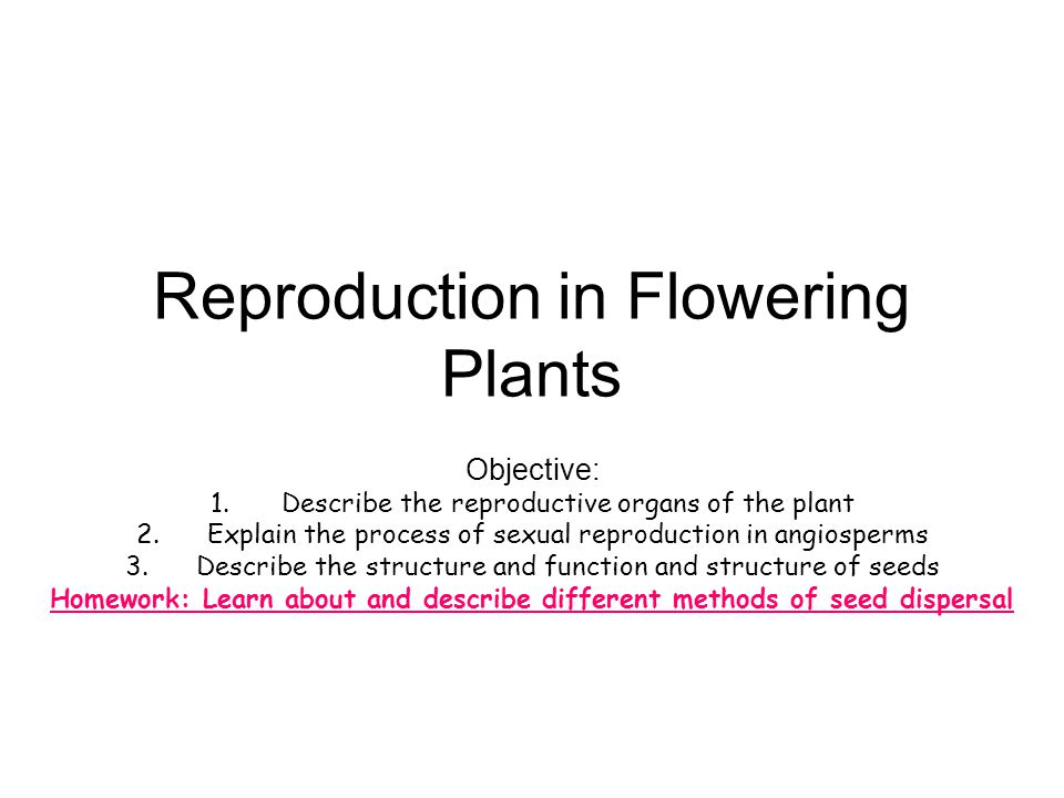 Explain how plants reproduce sexually