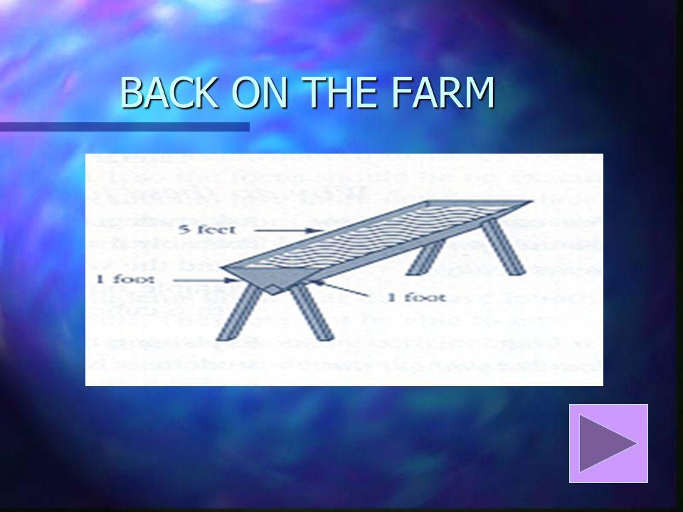 BACK ON THE FARM
