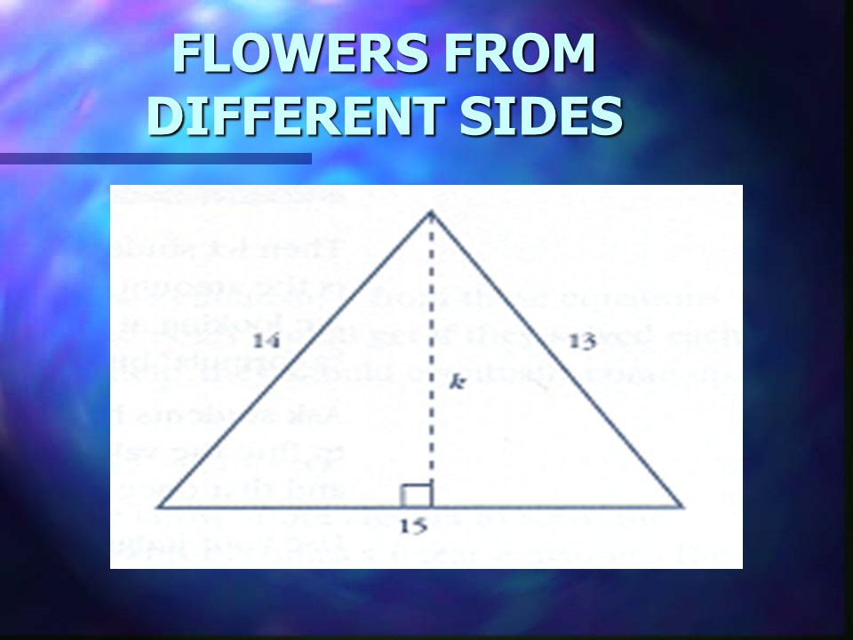 FLOWERS FROM DIFFERENT SIDES