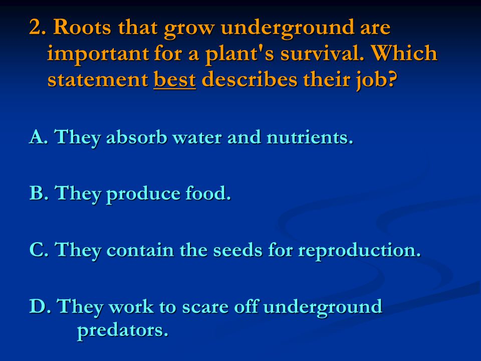 2. Roots that grow underground are important for a plant s survival
