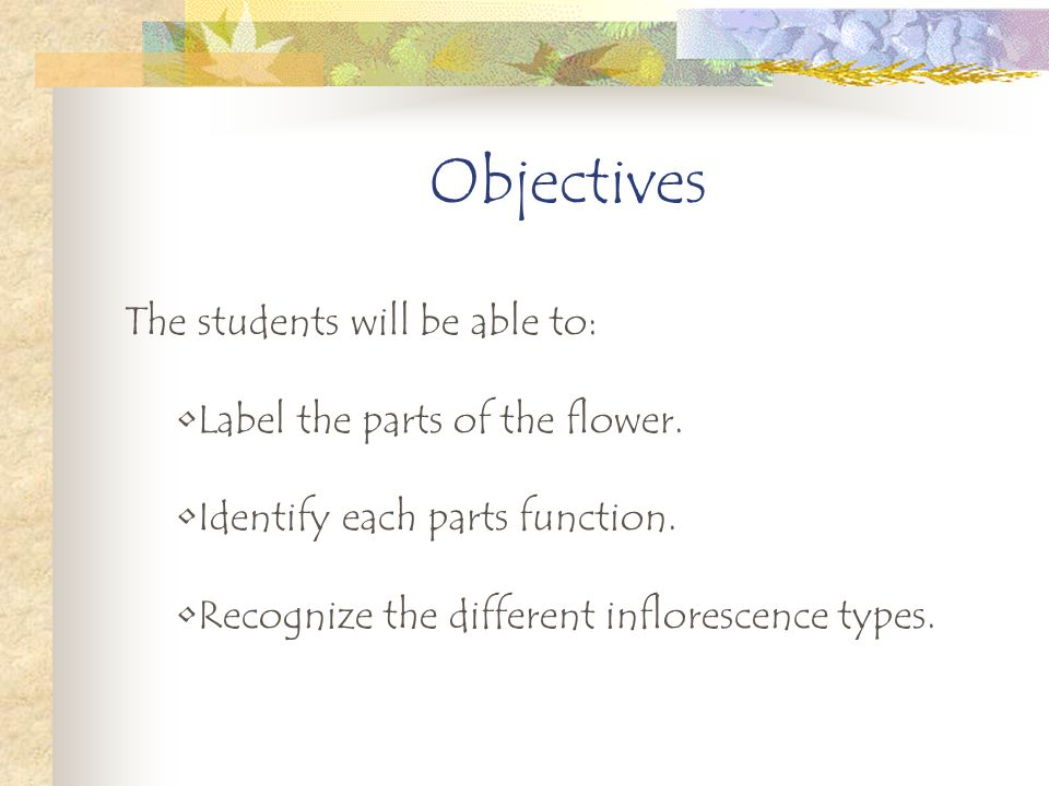 Objectives The students will be able to: