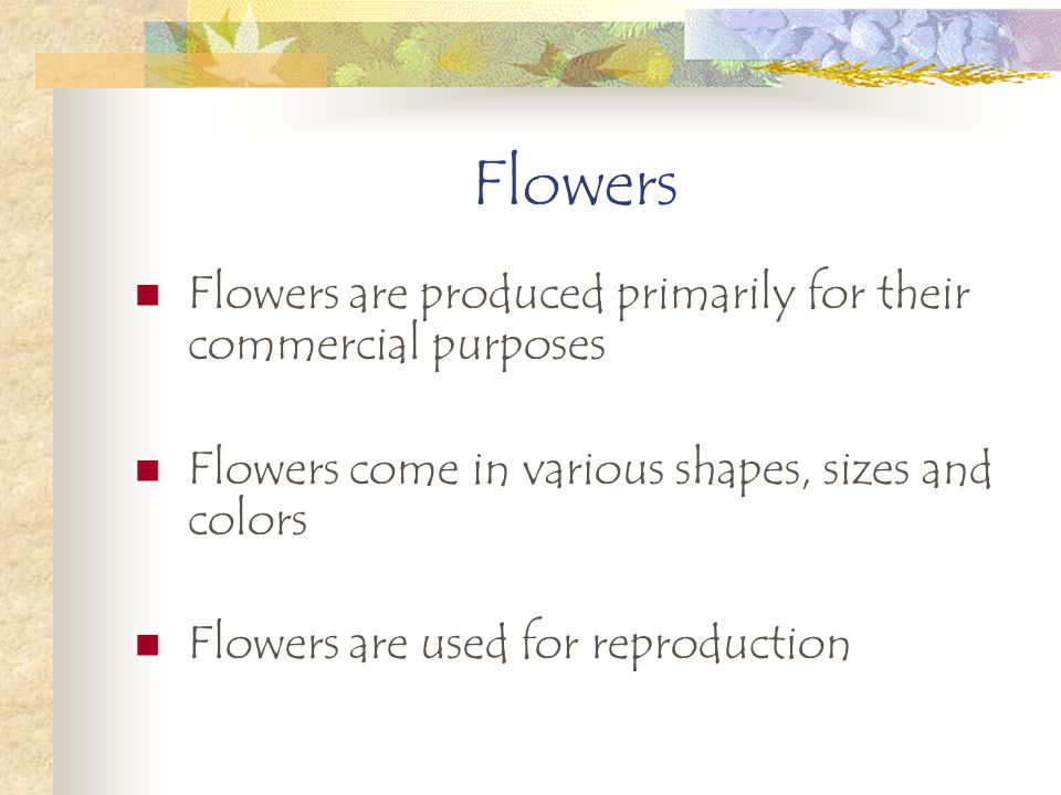 Flowers Flowers are produced primarily for their commercial purposes