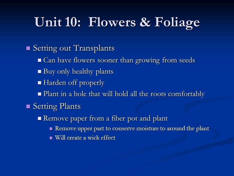 Unit 10: Flowers & Foliage