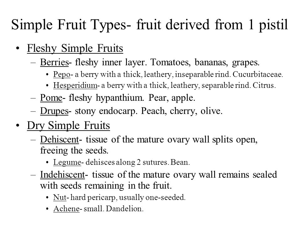 Simple Fruit Types- fruit derived from 1 pistil