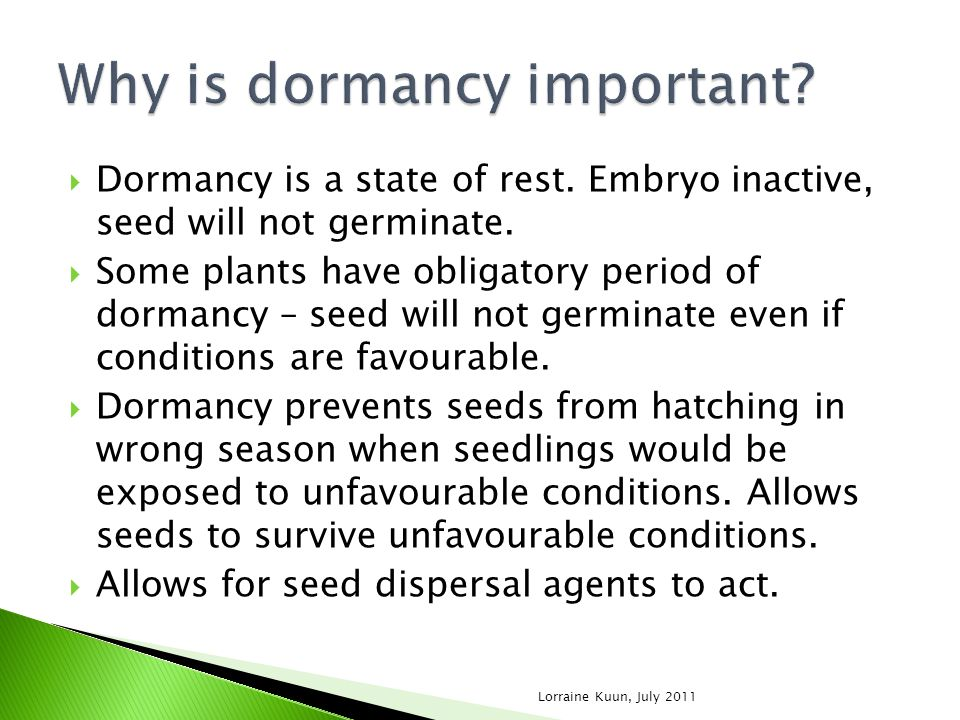 Why is dormancy important