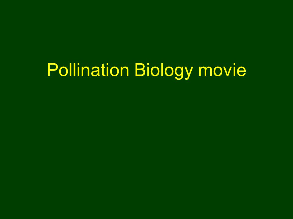 Pollination Biology movie