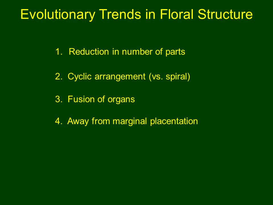 Evolutionary Trends in Floral Structure