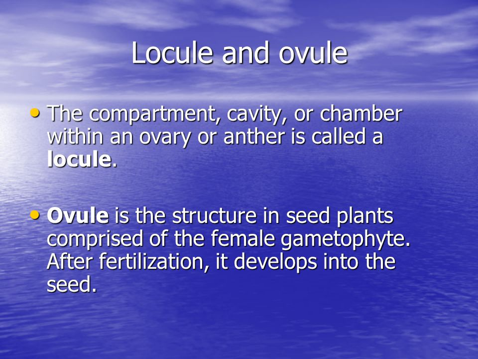 Locule and ovule The compartment, cavity, or chamber within an ovary or anther is called a locule.