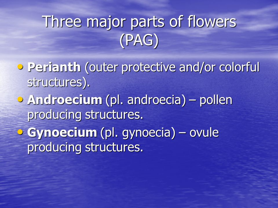 Three major parts of flowers (PAG)