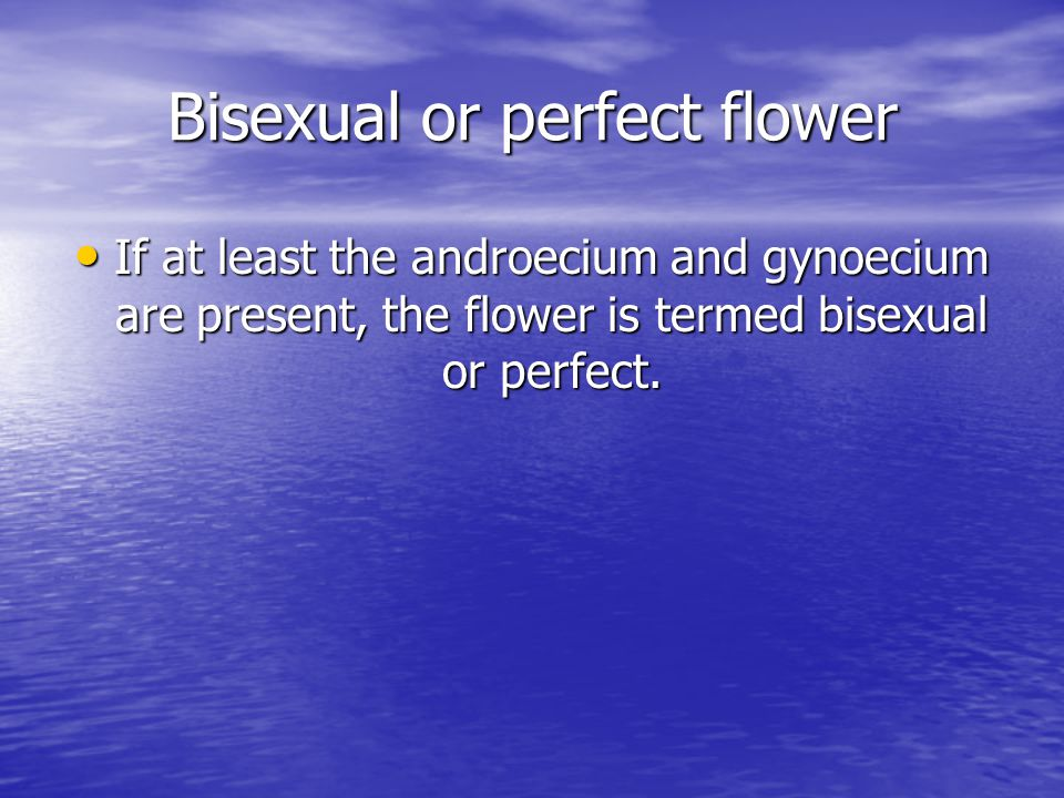 Bisexual or perfect flower