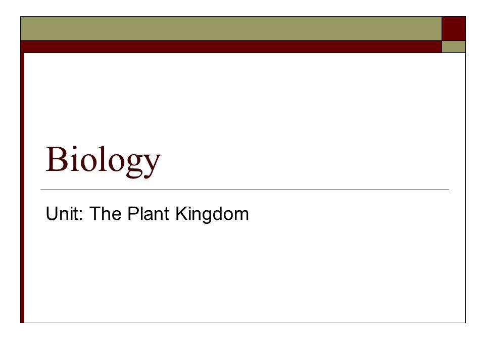 Unit: The Plant Kingdom