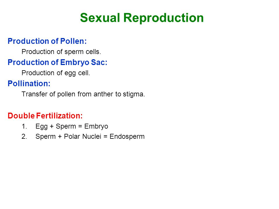 Sexual Reproduction Production of Pollen: Production of Embryo Sac: