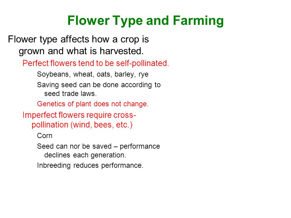 Flower Type and Farming