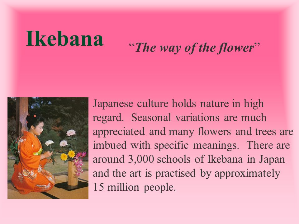 Ikebana The way of the flower