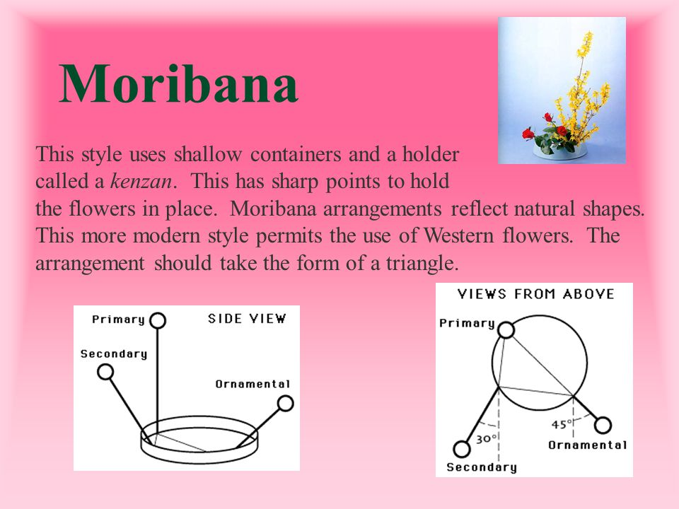 Moribana This style uses shallow containers and a holder