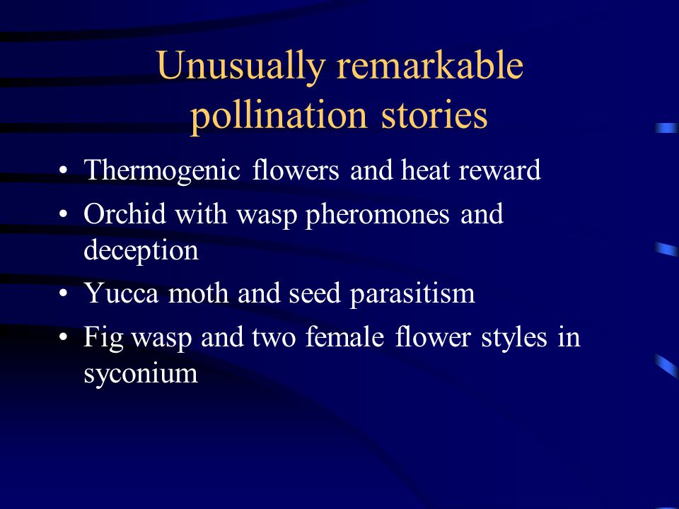 Unusually remarkable pollination stories