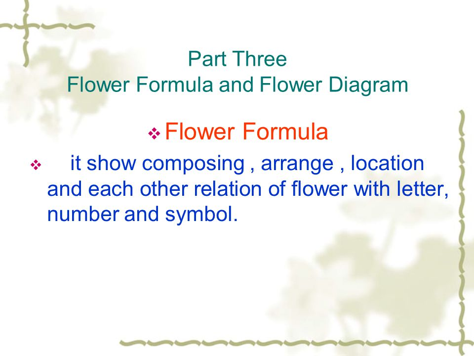 Part Three Flower Formula and Flower Diagram