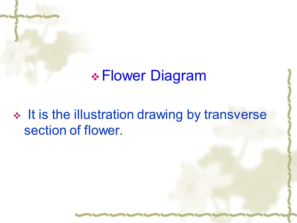 Flower Diagram It is the illustration drawing by transverse section of flower.