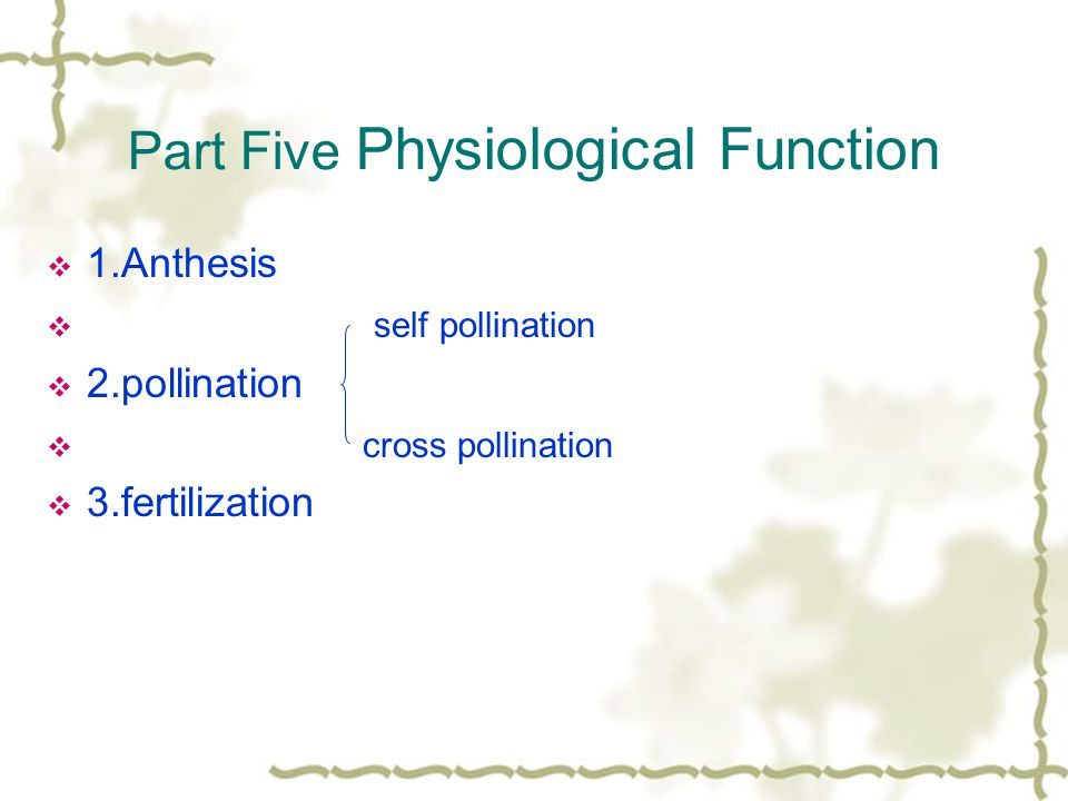 Part Five Physiological Function