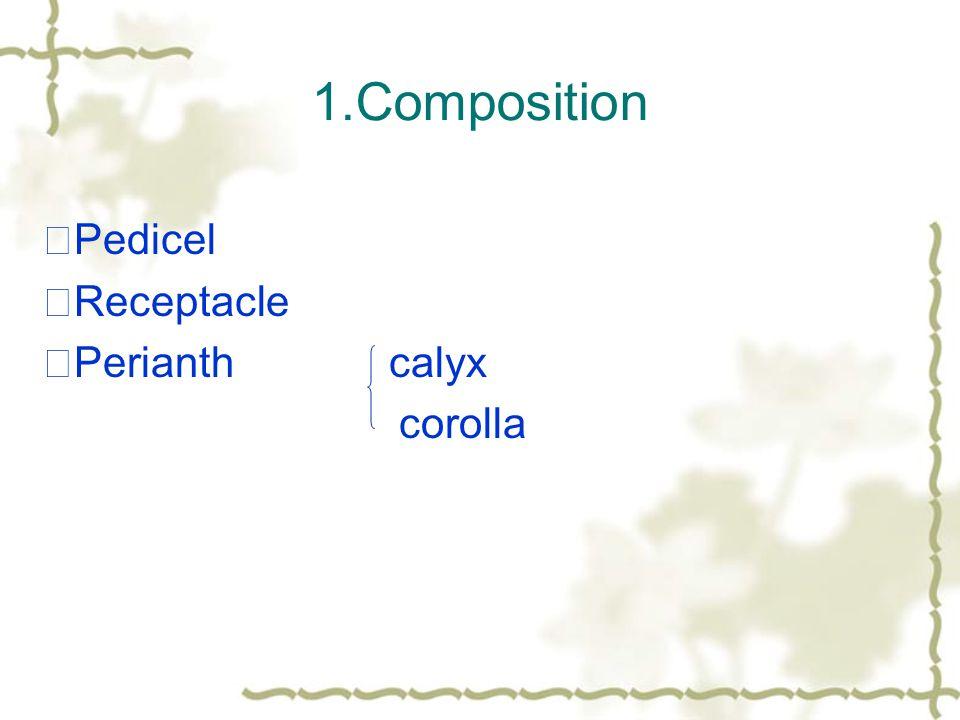 1.Composition ★Pedicel ★Receptacle ★Perianth calyx corolla