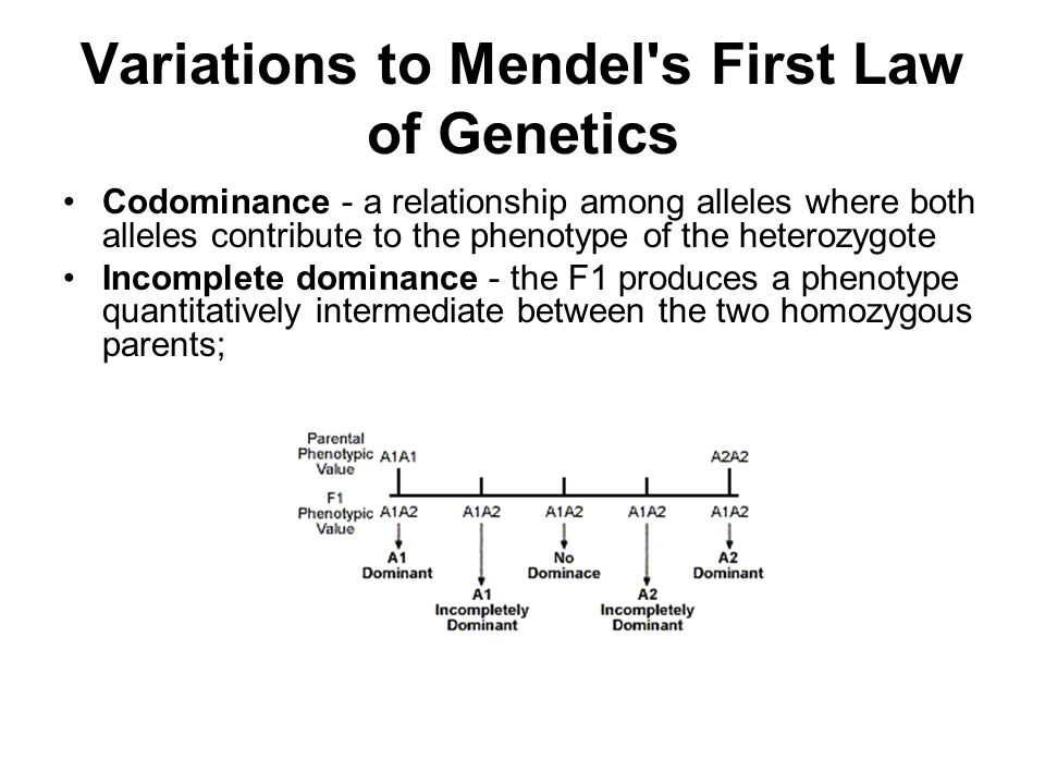 Variations to Mendel s First Law of Genetics