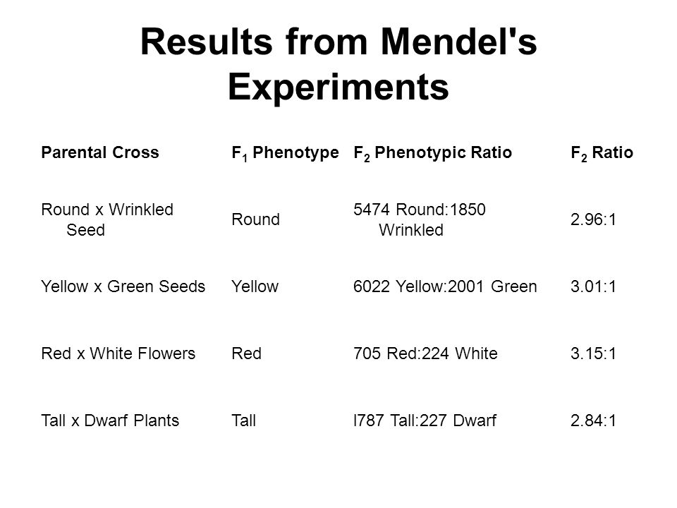 Results from Mendel s Experiments