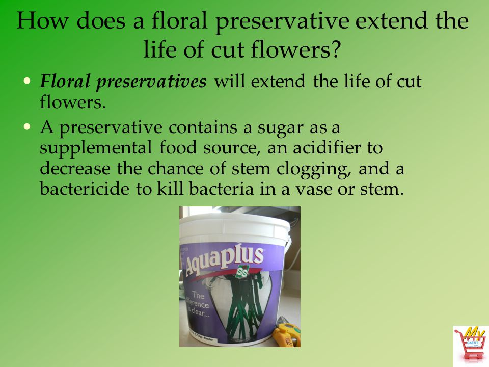How does a floral preservative extend the life of cut flowers