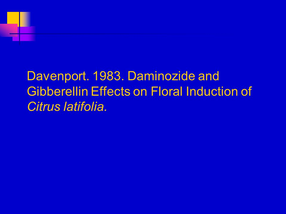 Davenport. 1983. Daminozide and Gibberellin Effects on Floral Induction of Citrus latifolia.